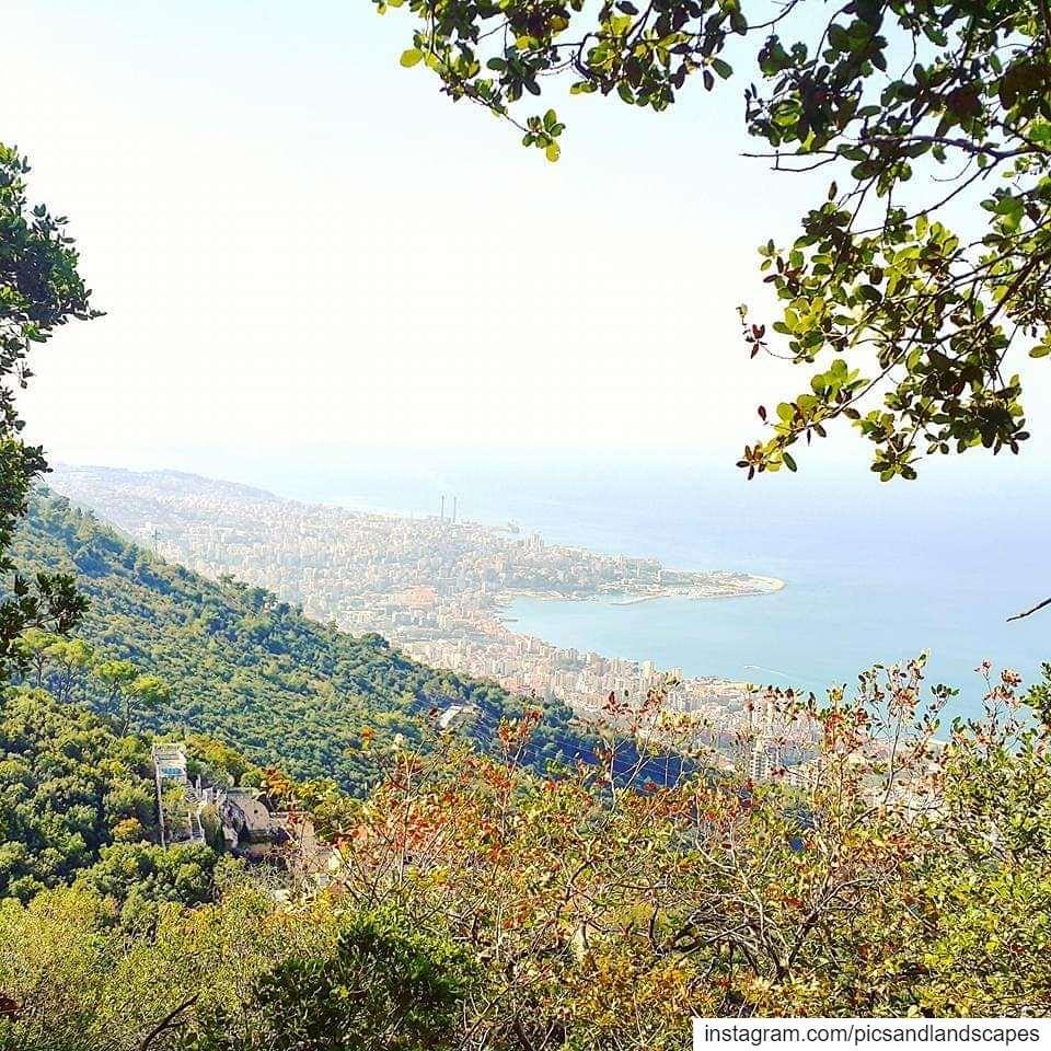 Hiking 👣 hikerlife hikingadventure naturereserve hikingtrail...