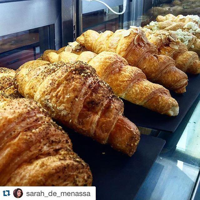 Good Morning Lebanon... (Starbucks)