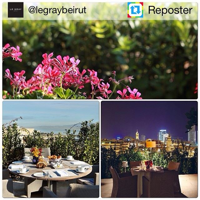 Repost from @legraybeirut by Reposter @307apps