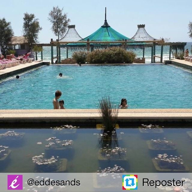 Repost from @eddesands by Reposter @307apps