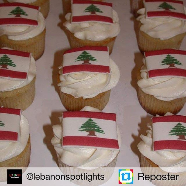 Repost from @lebanonspotlights by Reposter @307apps