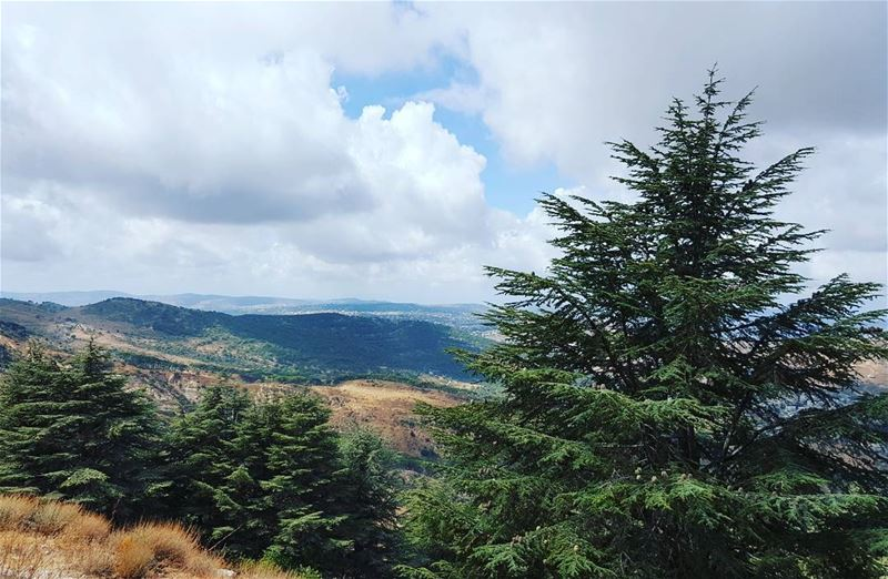 Nature is the best way to boost your ene (Lebanon)