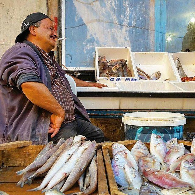 Sunday, fish day 🎣🐡🐟🐠 liveauthentic (Saïda, Al Janub, Lebanon)