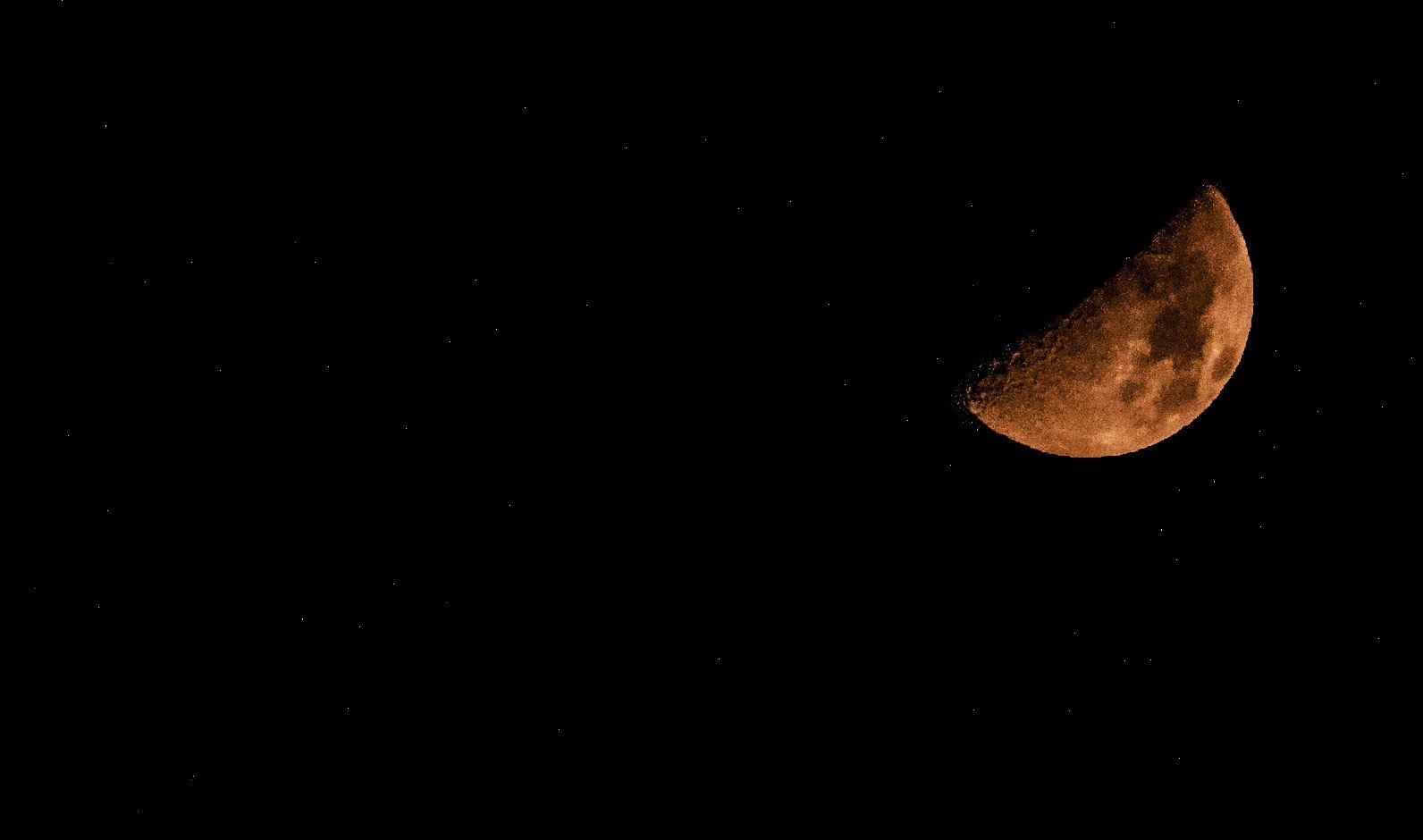 Half Moon Tonight