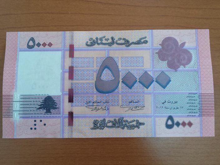 New 5000 Lira