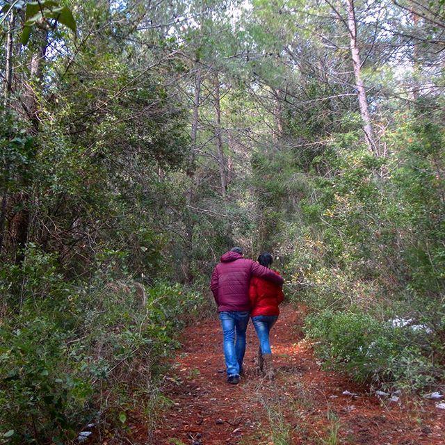 beautifunature livelovehardine verdurenatureverte wintertime greenery forestgreen lovecouple