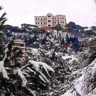 wintertime snow afterstorm livelovedhourshweir pinetrees (Dhour El Chweir)