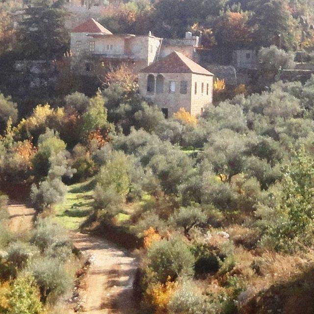 بيتو باخر البيوت ادامو علية بتوصل عالبيت وبتفوت وبتسلم الهدية (Hardine, Lebanon)