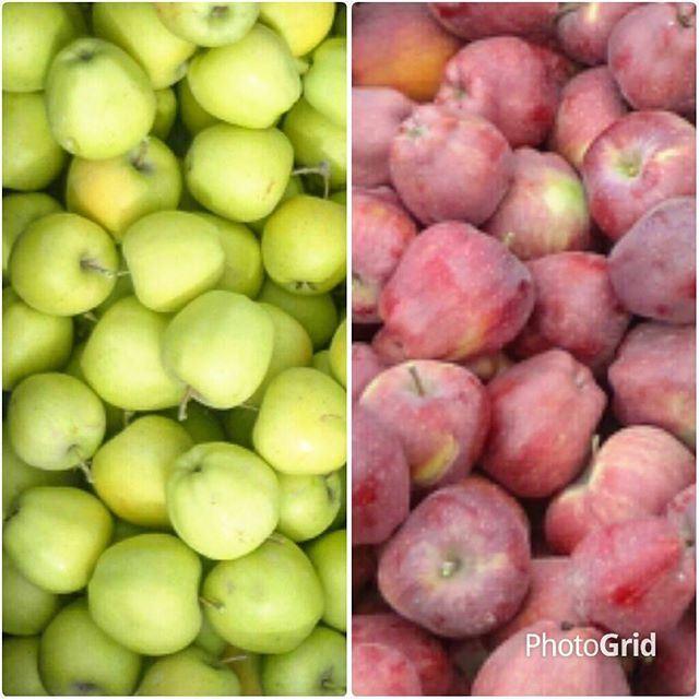 appleredapple whiteapple yellowapple fruitpommesrouges pommesjaunes automne autumfall (Tarchich)