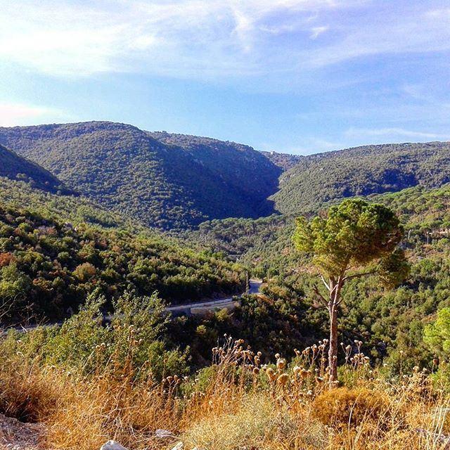 من التلة لكعب الوادي يغنيلك الطير الشادي (Bzébdîne, Mont-Liban, Lebanon)