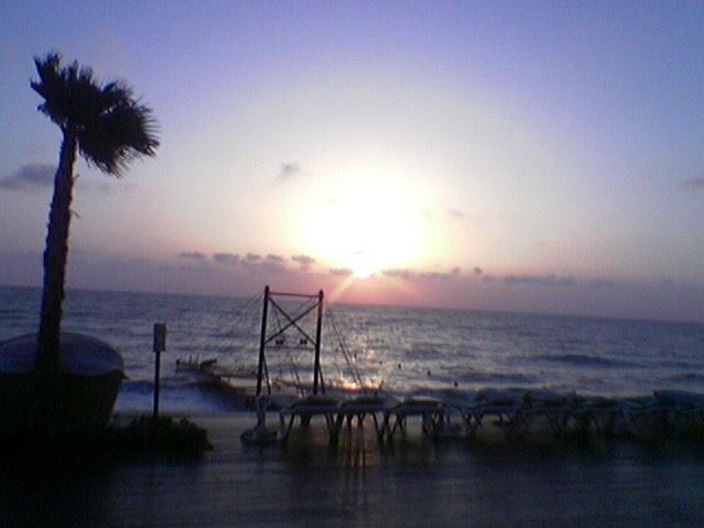 Oceana Beach Damour 2005