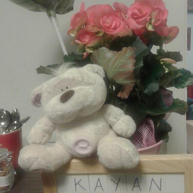 kayan roses flowers loves_flowers_ fleurs nouveauné
