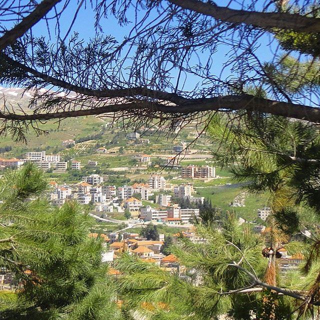 حمرا سطيحاتك حمرا كللا رفوف عصافير (Zahlé, Lebanon)