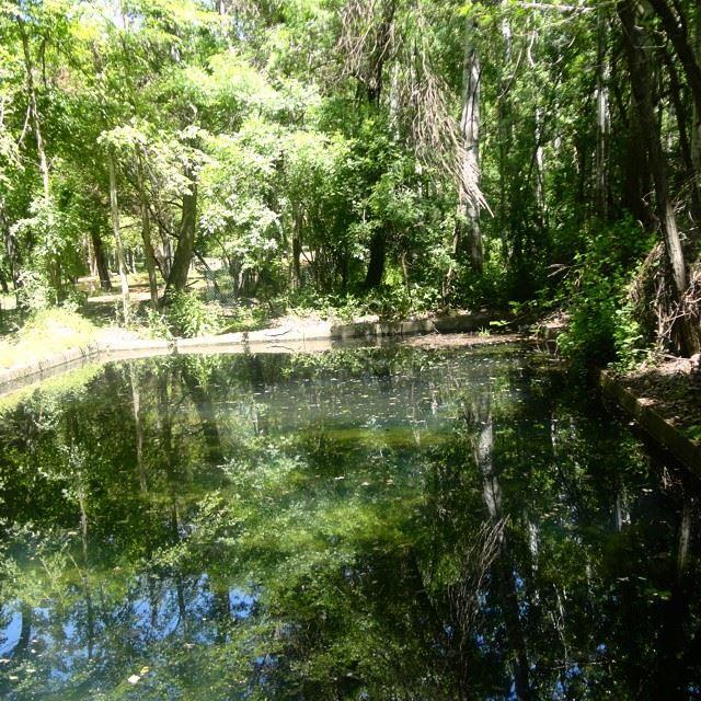 forestpark park parcforestlakewaterbeautifullebanon beautifulnature discoverlebanon discoverlebanonsnaturereflection