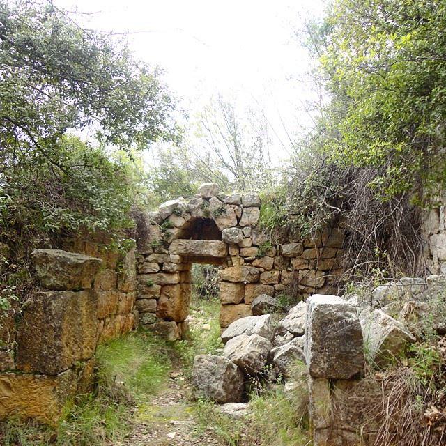 oldmonastery monastere abandoned ruin ruines stonewalls architecture archnaturenatureoflebanon whatsuplebanon