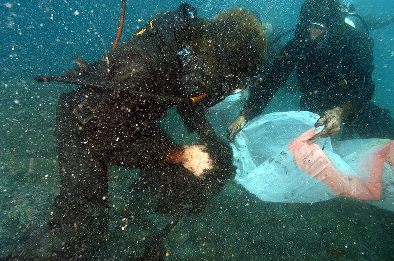 Greenpeace Cleaning the Sea After the War