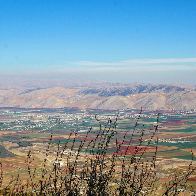 #livelovebekaa #colorfulplain#plain(Beqaa Valley)