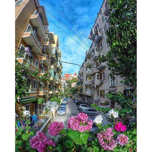 Streets of Beirut 🇱🇧 (Gemmayze)