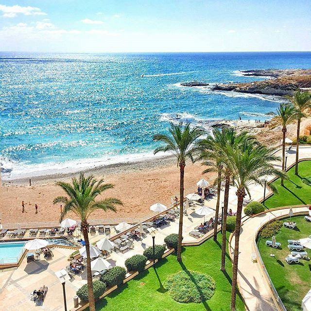 Tropical Beirut! 🌴😍💙 (Beirut, Lebanon)