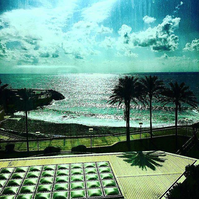 What a view 🌴🏊 (Mövenpick Beirut)