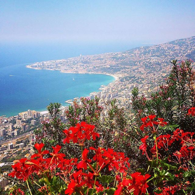 📍Lebanon from above 🙌 (Jounyeh)