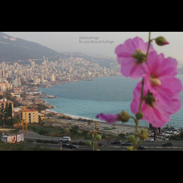 Jounieh View From CasinoDuLiban (Jouneih Casino Du Liban)