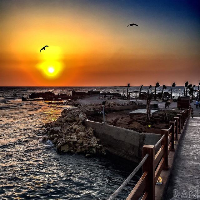 There's a place I go to where no one knows me..It's not lonely..It's a necessary thing. (Corniche El Mina Tripoli)