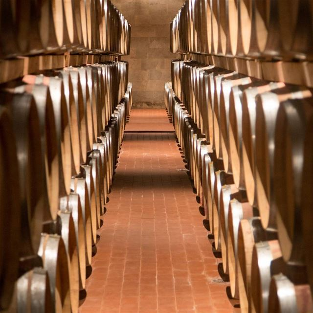 Cave Kefraya Winery (Château Kefraya - Plaine De Bekka)