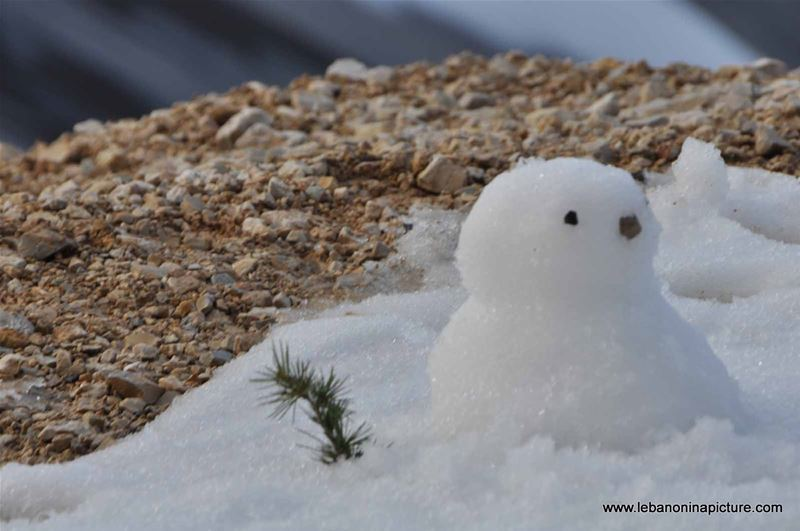 Sed Chabroo7 Winter 2012 (Shabrooh Lake)