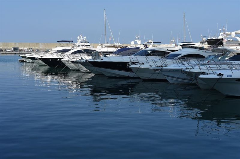 Beautiful Sunday boats yachts (Zaituna Bay and Yacht Club)