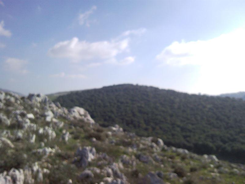 Yaroun: A Walk in Al Mansoura
