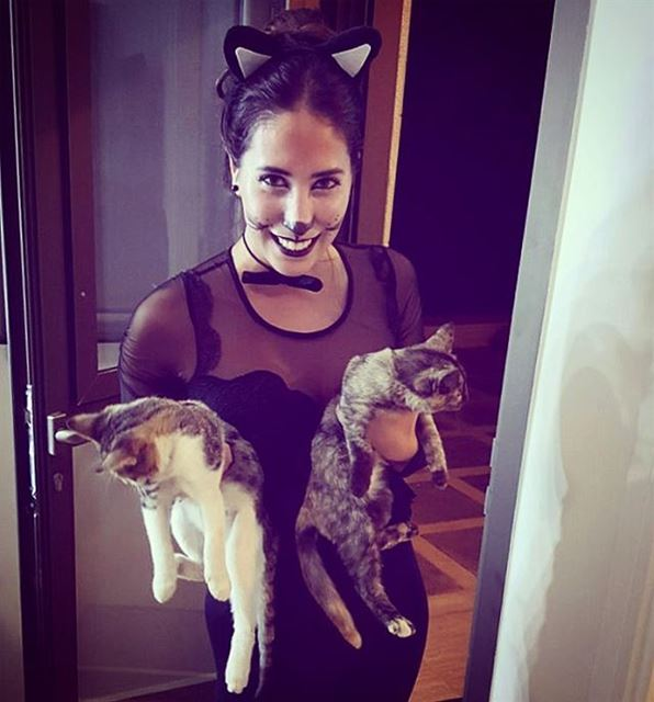 Meet my kittens 🐱Pif - Paf🐱(Monteverde, Beirut)