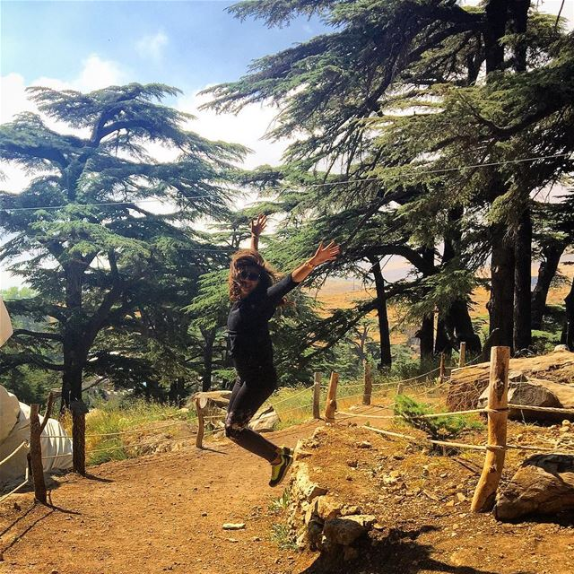 Some Rare Moments In Life (Cedars of God)