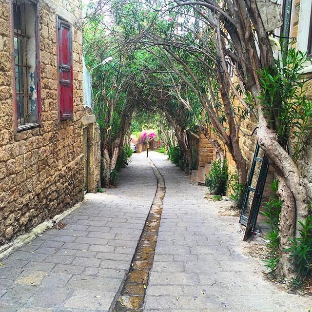 Les ruelles de Byblos...