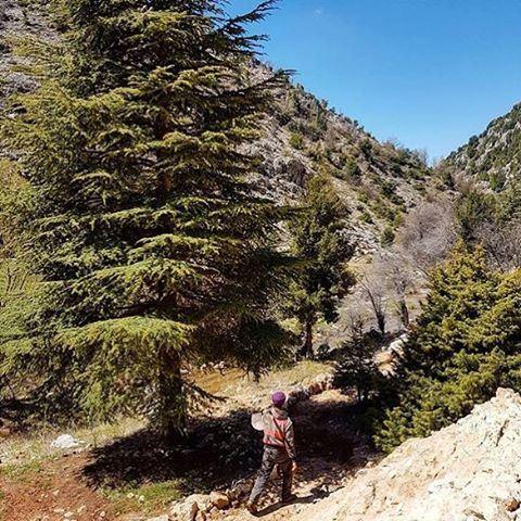 A 30 minutes du centre ville de Byblos, les plus belles randonnées vous attendent... livelovebyblos by @live.love.had.solo