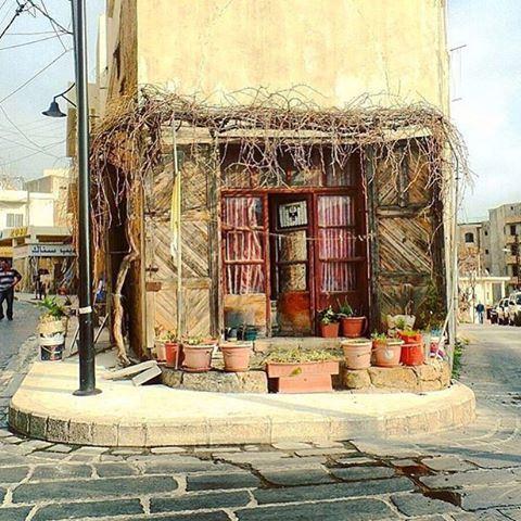 Tiny souks of Byblos...