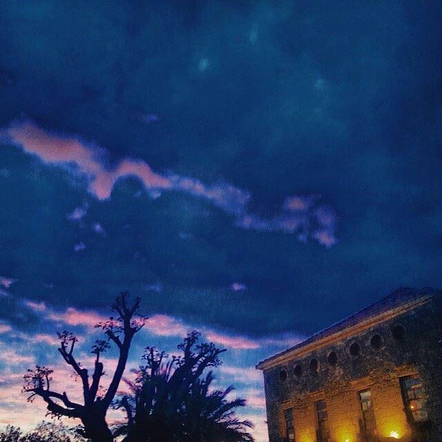 -velvet sky-