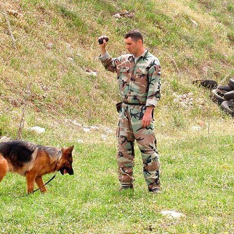 تدريب كلاب فحص الالغام ✌️🇱🇧