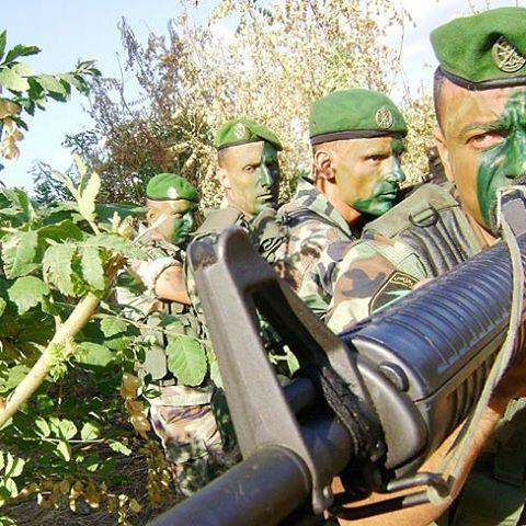 الجيش اللبناني - التدخل ✌️🇱🇧