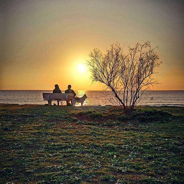 Enjoy Your Sunset 🌅
