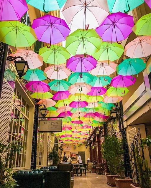 The Alleyway is back with new collection of crazy colored umbrellas up!!