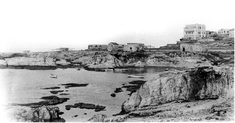 Manara 1896