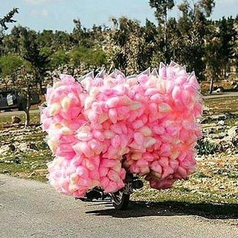 Amazing Sites around every corner 😍😍😍💗💗💗💗 cottoncandy
