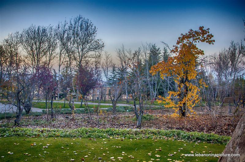 A never ending Autumn (Laklouk)