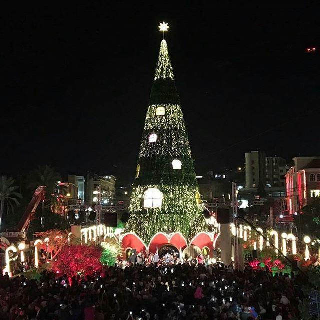 جبيل إضاءة شجرة الميلاد في