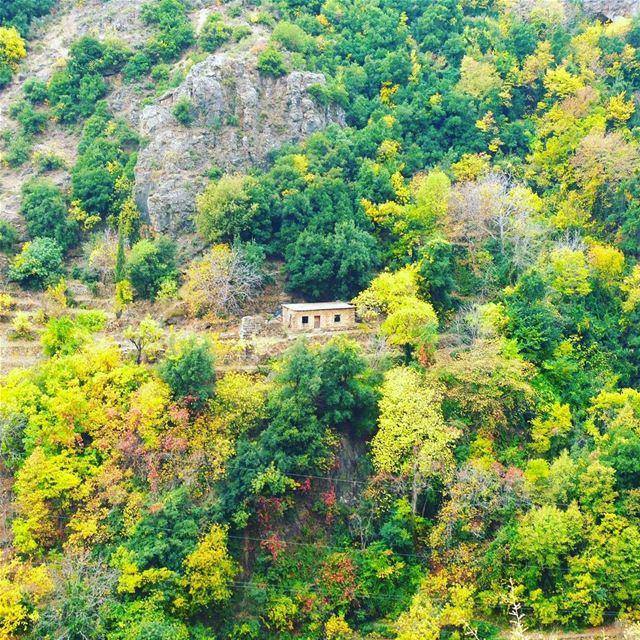 (Wadi Qannubin, Liban-Nord, Lebanon)