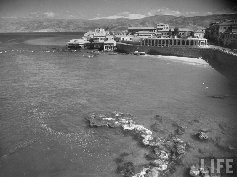 Zeitouneh 1938