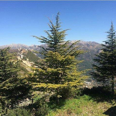 More from Annaya Nature (Annaya, Lebanon)