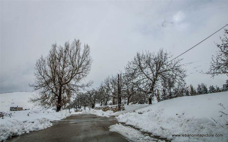 The Snowy Road of Qanat Bakich - Faqra (Qanat Bakich, Lebanon)