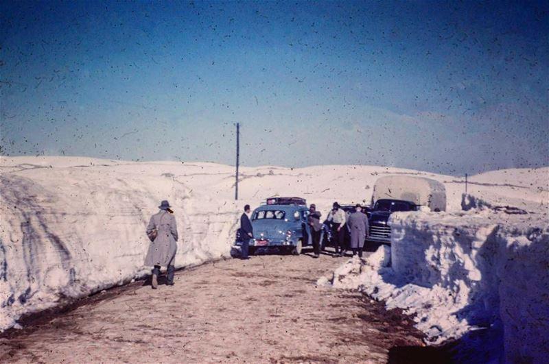 ضهر البيدر ١٩٥٥ ،Dahr Al Baydar 1955 .